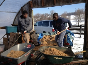 Students shoveling together