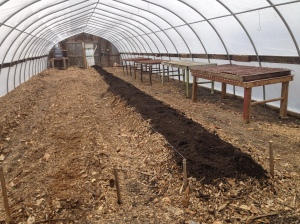 greenhouse rows