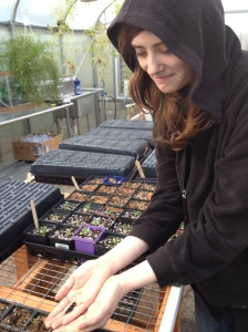 student holding a tomato seedling