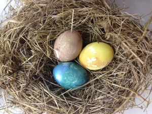 dyed eggs in a nest