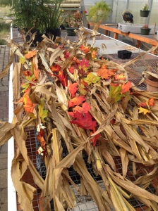 corn husk and leaves